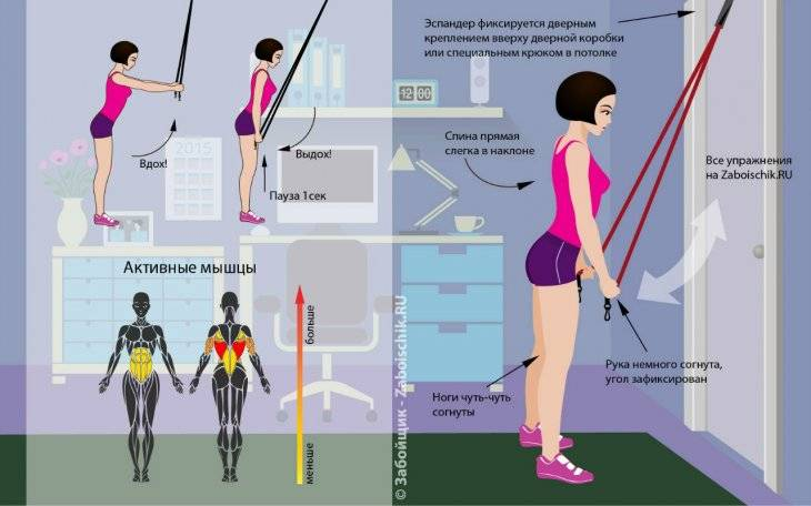 Упражнения с фитнес резинкой - виды тренировок для ног, рук, спины, ягодиц и пресса