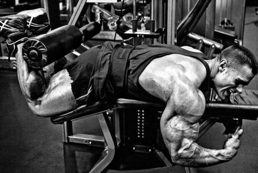 Силовые тренировки – что это такое и для чего? | the base