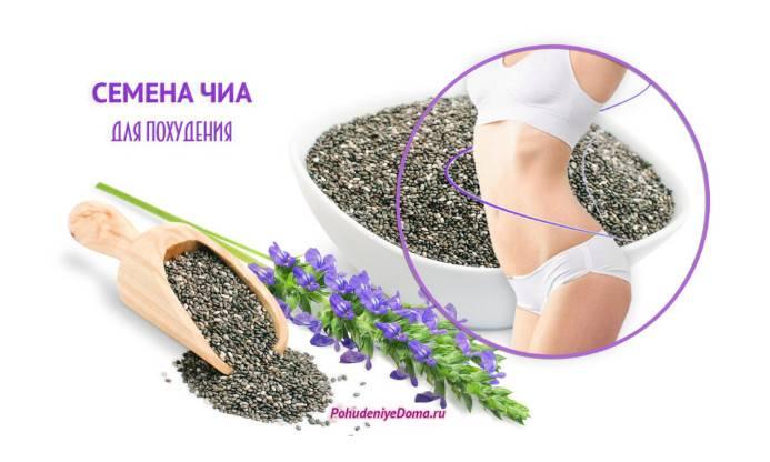 Семена чиа для похудения и здоровья: результаты исследований эффективности