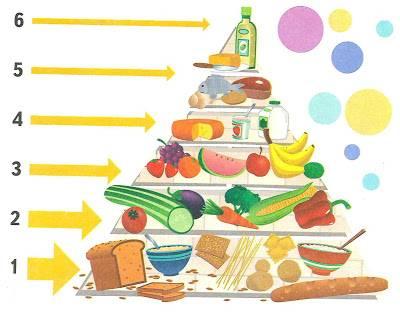 Пирамида здорового питания человека для правильного рациона и похудения: продукты пищевого треугольника для мужчин, женщин, детей