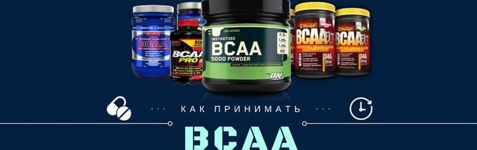 Bcaa: как принимать в порошке и капсулах, для чего нужны аминокислоты бцаа