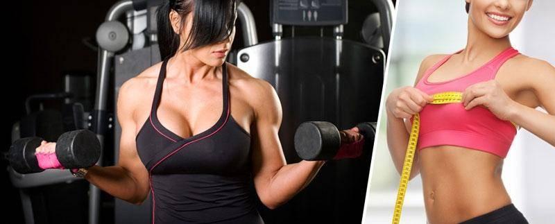 Как накачать грудь девушке: программа тренировок и меню на неделю