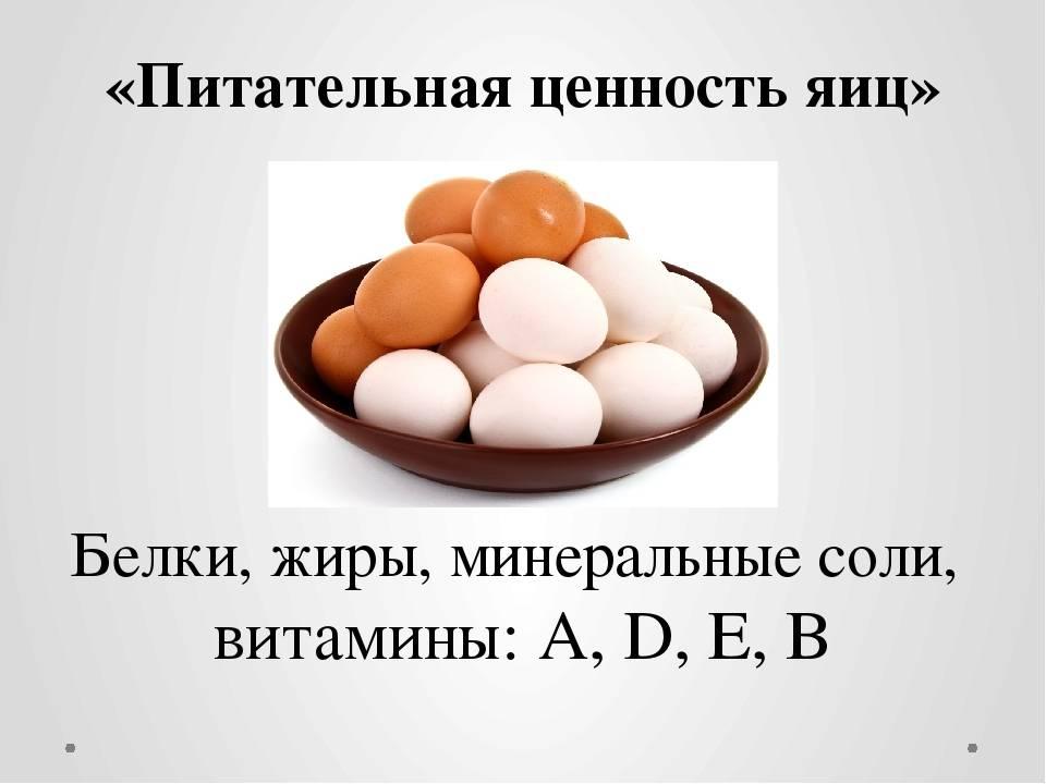 Вред и польза куриных яиц, вредно ли есть вареные яйца каждый день