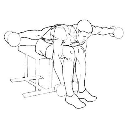 Жим гантелей на наклонной скамье: правильная техника, ошибки