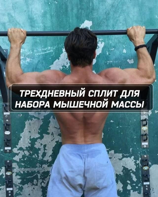 Программы тренировок на массу