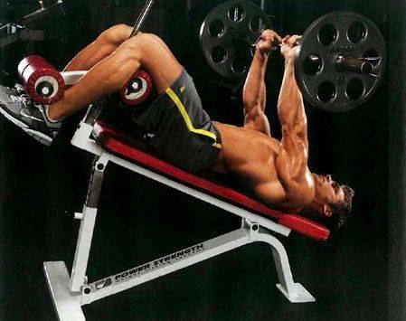 Упражнения с гантелями и штангой на все группы мышц