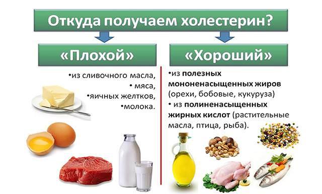 Продукты для снижения уровня холестерина, понижающие холестерин продукты питания