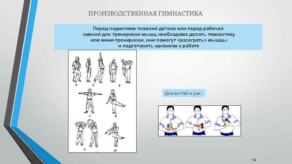 Офисная гимнастика: 30 лучших упражнений при сидячем образе жизни