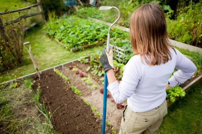 Как правильно: отдыхать в саду, работая физически | houzz россия