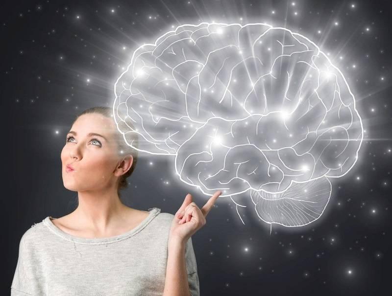 Наука мозга: интересные факты — блог викиум