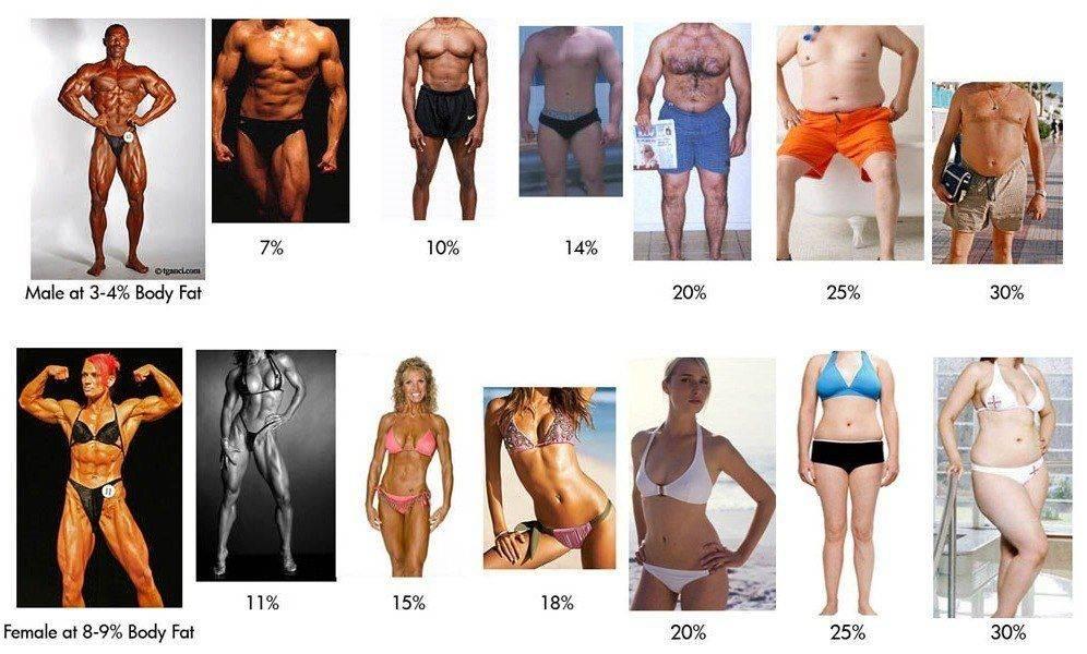 "Комплексное исследование ""анализ состава тела"""