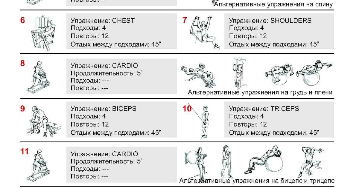 Сколько нужно тренироваться в тренажерном зале