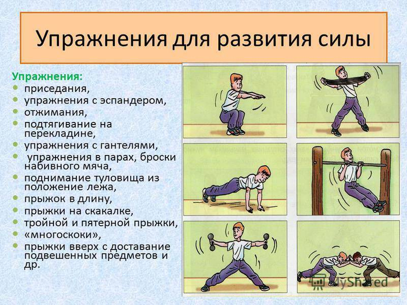 Тренировка силы хвата