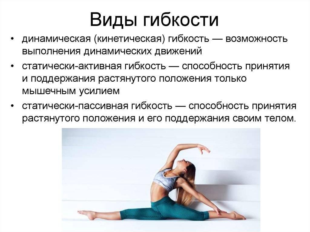 Гибкость (физическое качество), средства и методы развития » спортивный мурманск