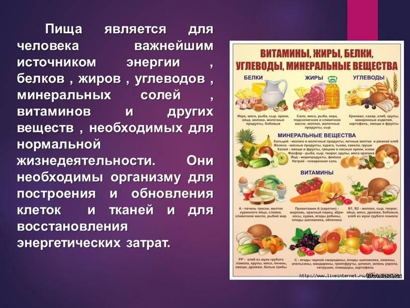 Белки, жиры и углеводы - медицинский портал eurolab
