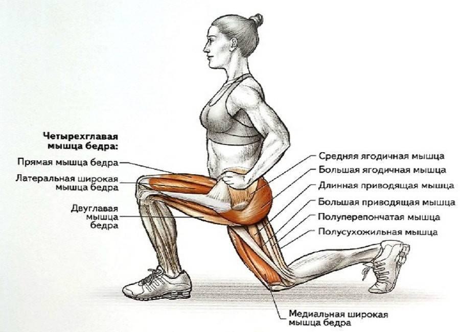 Приседания для потенции: польза упражнений