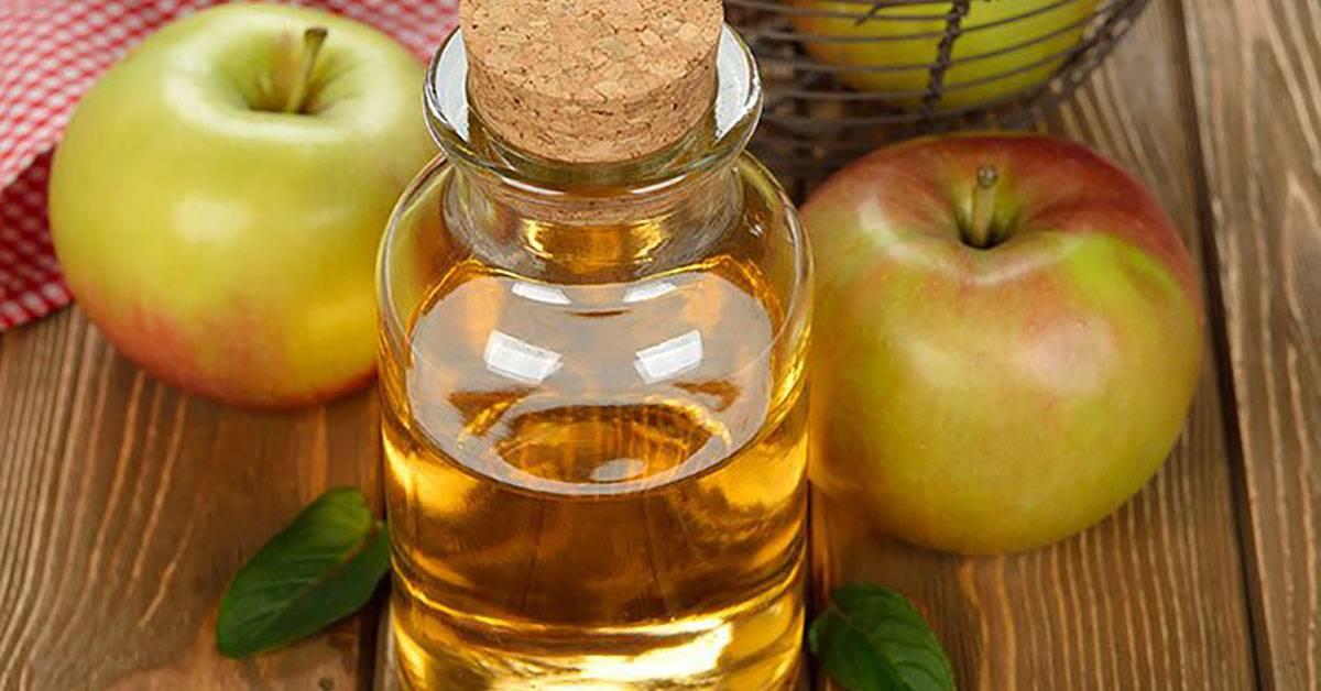 Польза и вред яблочного уксуса: как правильно употреблять его для похудения?