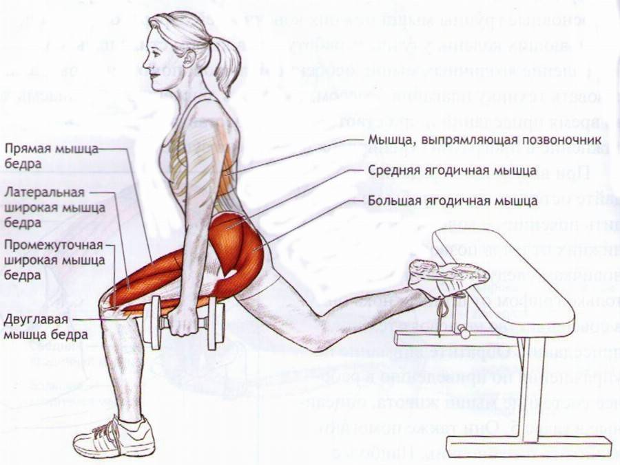 Приседания на одной ноге (пистолетик): польза, плюсы и минусы, техника выполнения упражнения