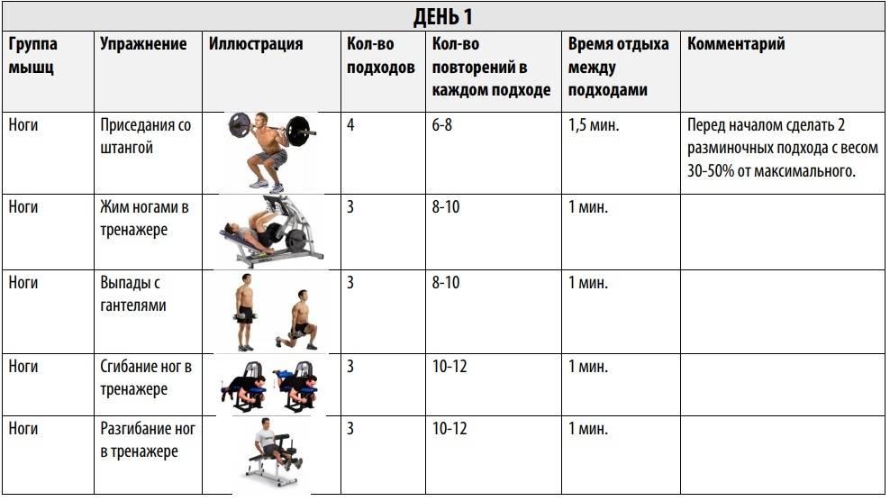 Программа тренировок для эндоморфа на похудение и прокачку мышц - блог о спорте osporte