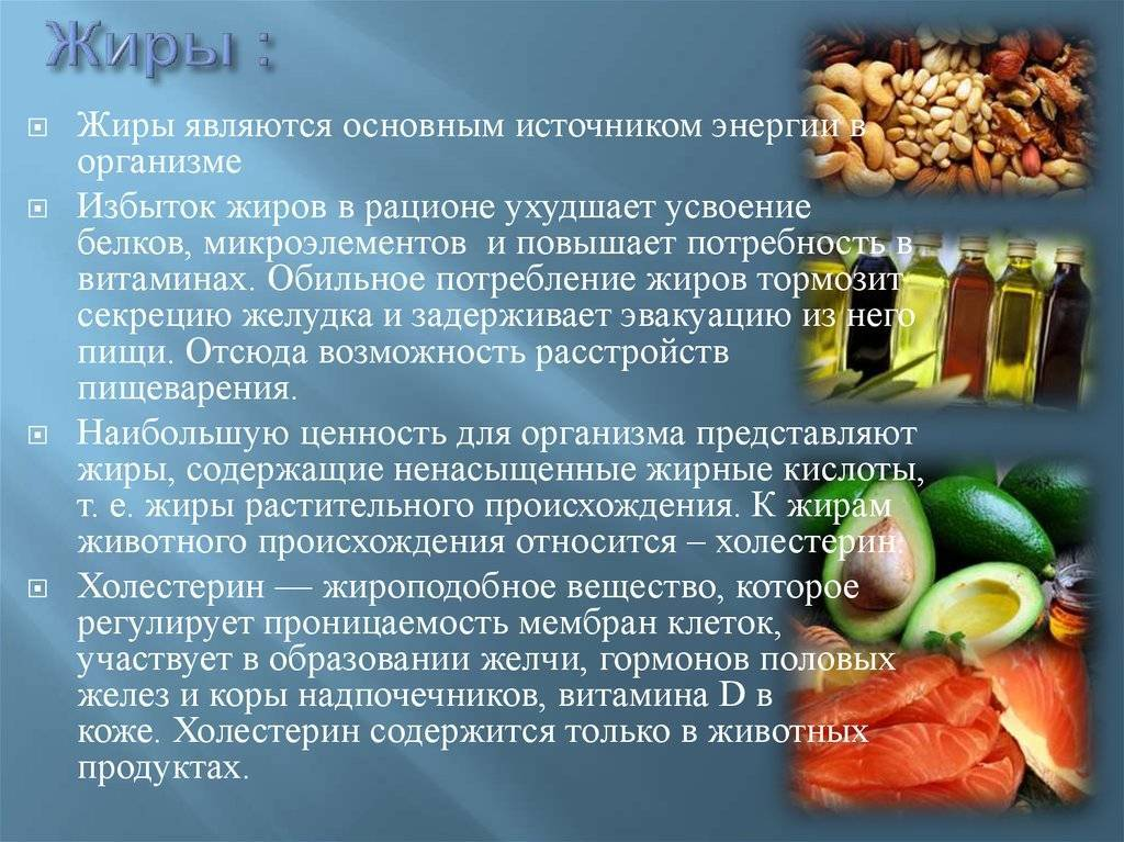 Польза жиров для здоровья