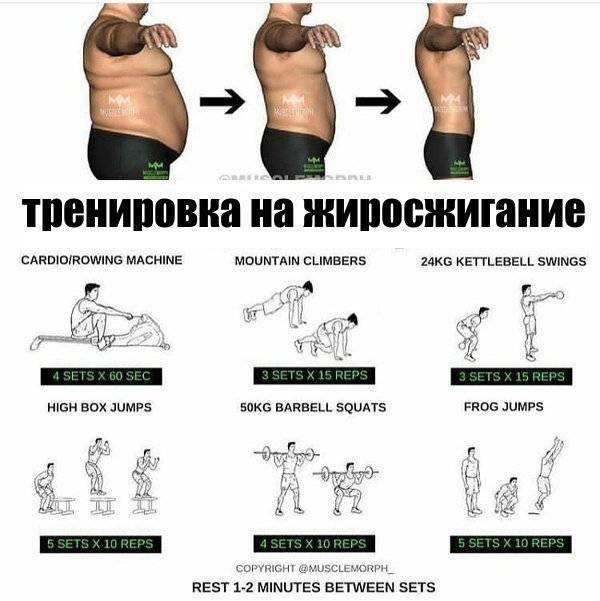 Силовые тренировки для похудения для мужчин и женщин, комплекс упражнений и разбор питания