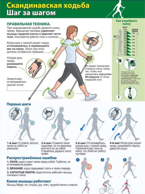 Скандинавская ходьба с палками для похудения, польза и вред техники | доктор борменталь
