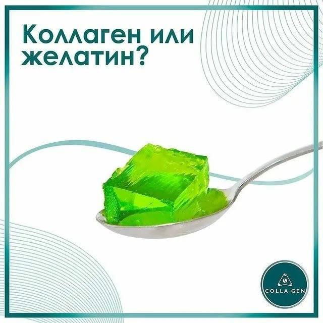 Чем отличается желатин от коллагена?