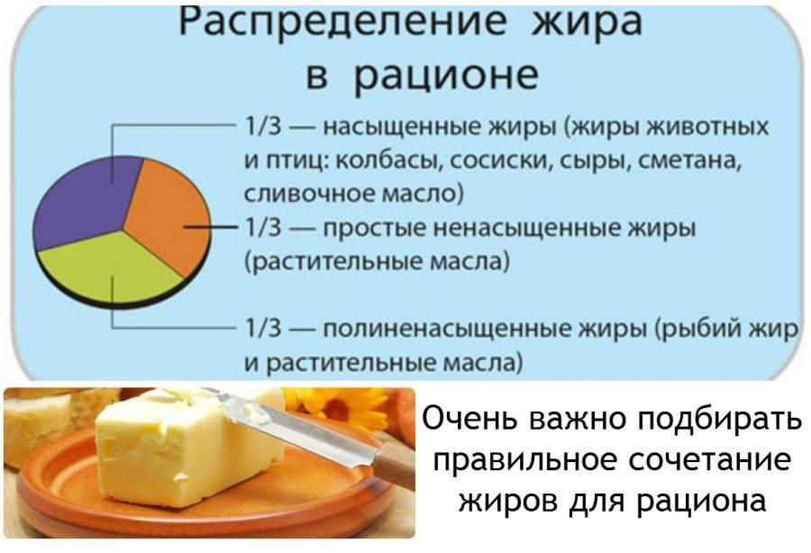 Молочные продукты, молочный жир: польза и вред для здоровья