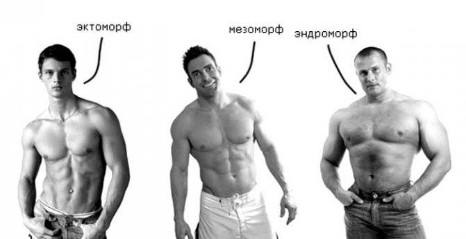 Как похудеть мезоморфу? – питание, тренировки, советы