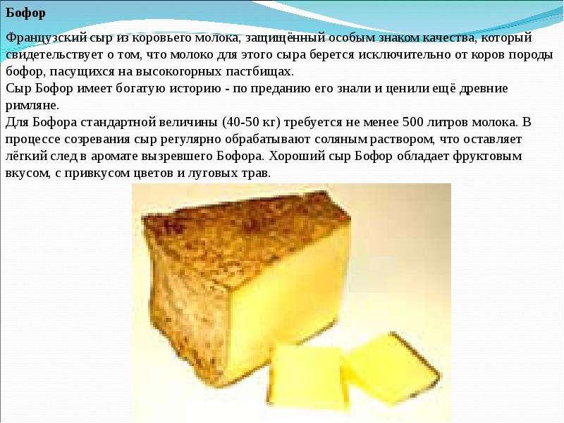 Сыр из молока в домашних условиях