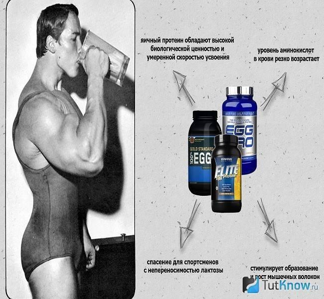 Как пить протеин для похудения, советы по выбору