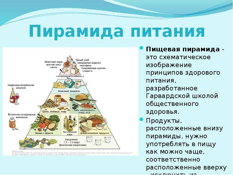 Пирамида питания теоретическая и практическая