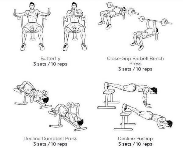 5 программ тренировки грудных мышц на массу – руководство новичка