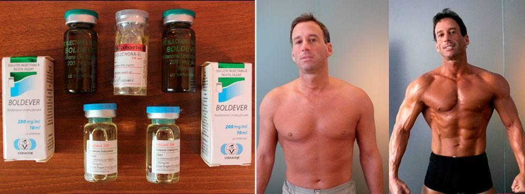 Провирон в бодибилдинге: как принимать на курсе стероидов