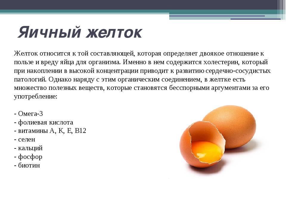 Чем полезны куриные яйца для человека: польза, состав и калорийности яиц