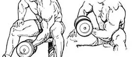 Концентрированный подъем на бицепс: варианты стоя, сидя и в кроссовере