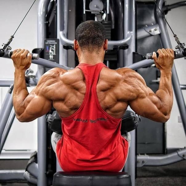 Это лучшие упражнения для развития мощной спины
