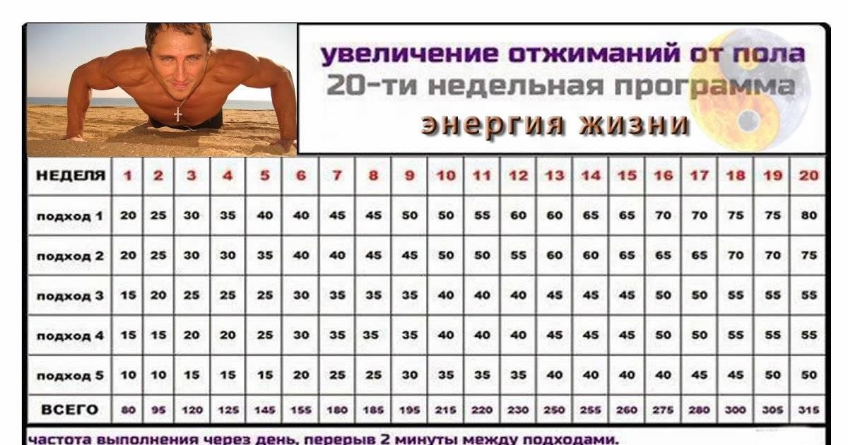 120 отжиманий — программа тренировок