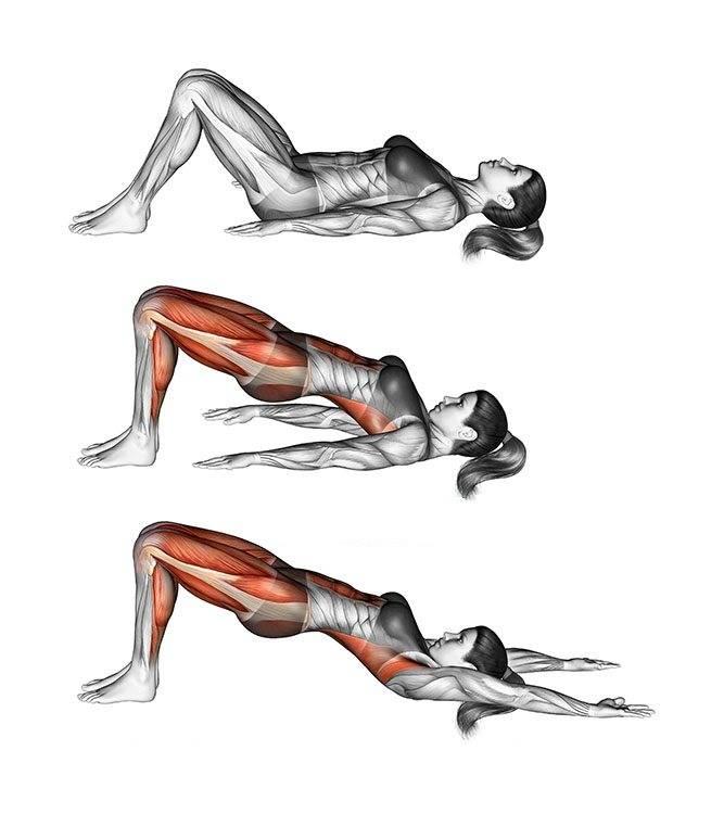 6 эффективных упражнений на нижний пресс