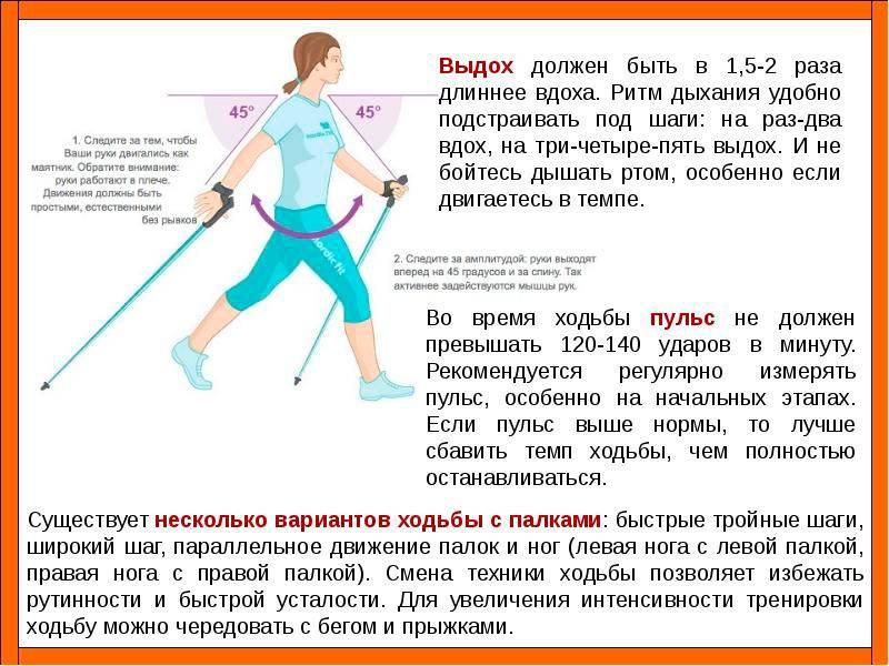 Cкандинавская ходьба: как правильно ходить для похудения