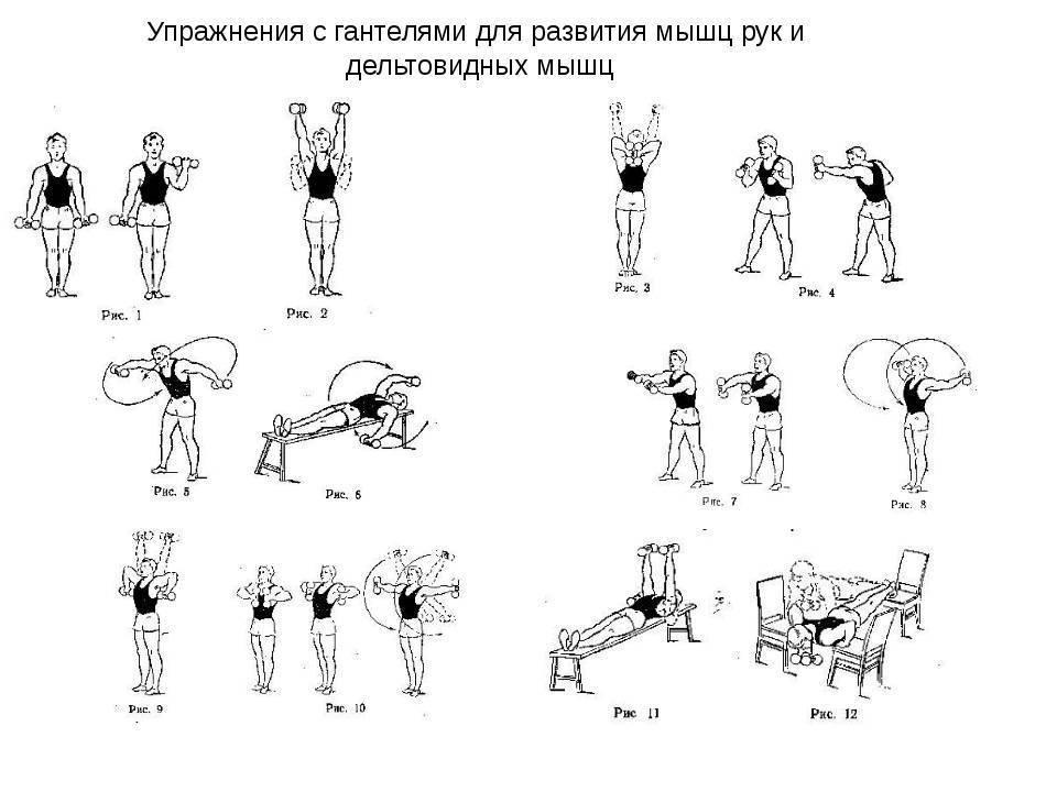 Упражнение с гантелями в домашних условиях для мужчин: фото, видео