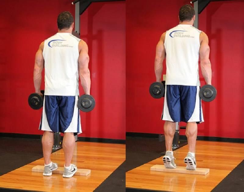 Подъем на носки с гантелями: техника выполнения, какие мышцы работают
