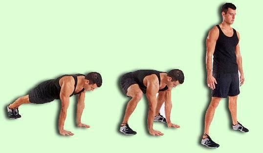 Отжимания на брусьях: какие мышцы работают, виды и техника выполнения, схема и программа тренировок