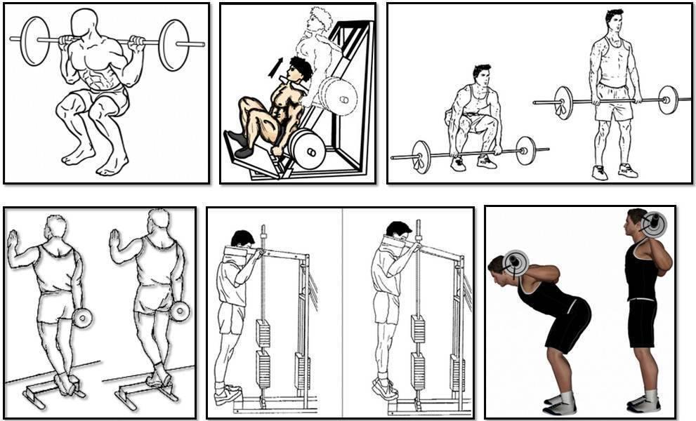 Базовая программа тренировок для набора массы