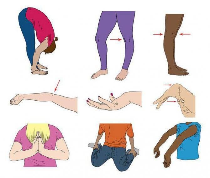 5 секретов восстановления хрящевой ткани в колене - нолтрекс.