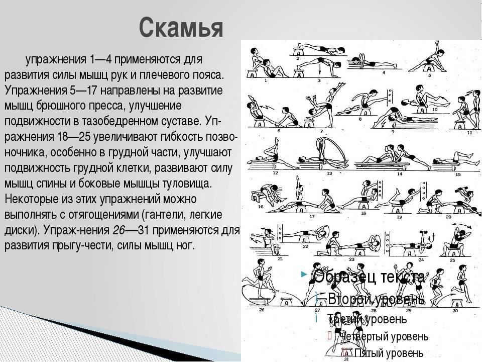 Тренировочный план для мужчин на увеличение силы и массы мышц