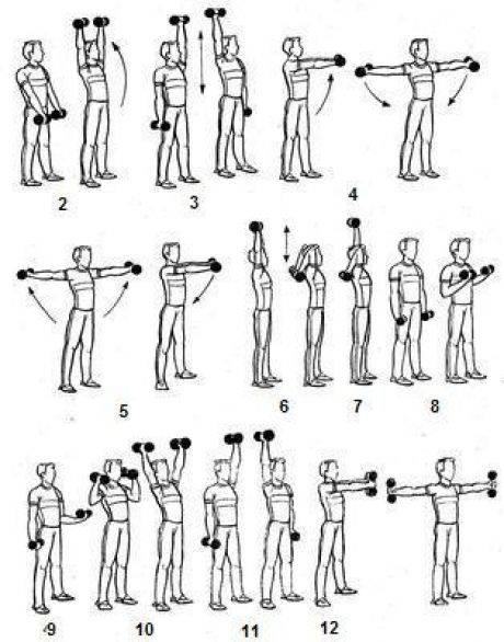 Лучшие упражнения с гантелями для девушек для похудения живота и рук