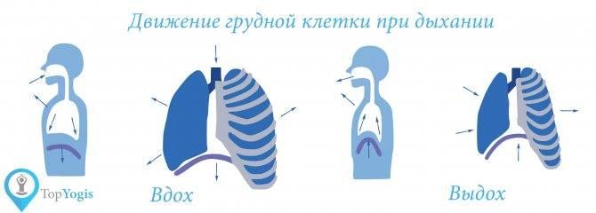 ➤ как правильно дышать при схватках и родах