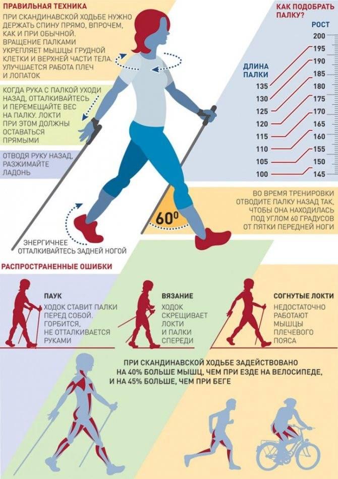Скандинавская ходьба с палками для похудения: техника и как правильно ходить?
