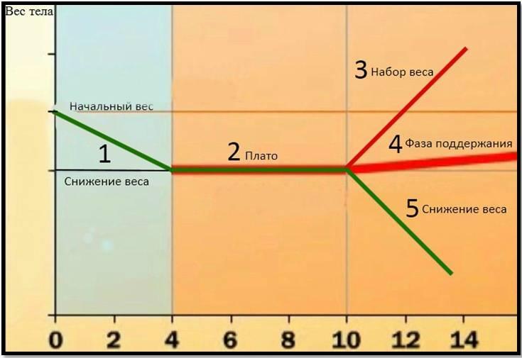 Эффект плато при похудении – что делать?